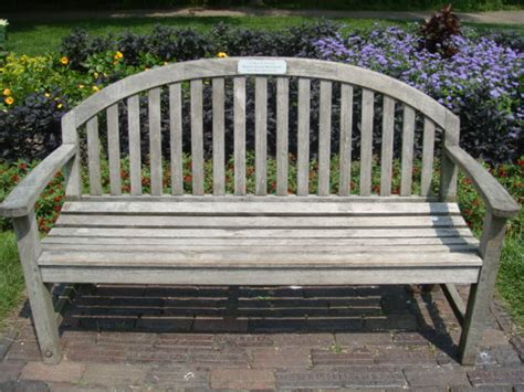 plant benches lincoln park conservancy dedicate a bench tree or plant