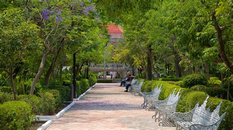 Garden San Marcos by Gardens Parks Pictures View Images Of Aguascalientes