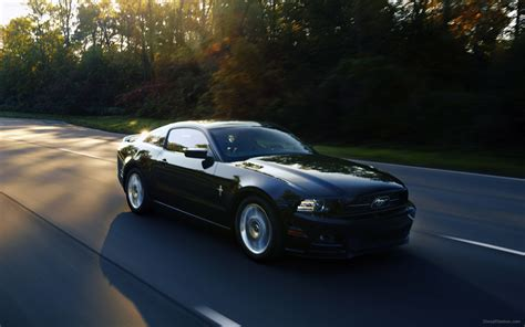 2013 mustang gt ford mustang gt 2013 widescreen car photo 23 of 50