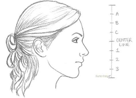Hairstyle Tools Designs For Silhouette Harry by How To Draw A Side View Rapidfireart