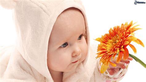 insonnia fiori di bach rovellasca 9 5 a ciascun bimbo un fiore di bach easymamma