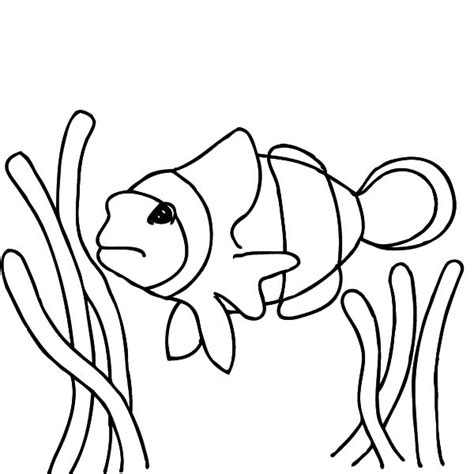 finding nemo coloring pages anglerfish clown fish coloring pages
