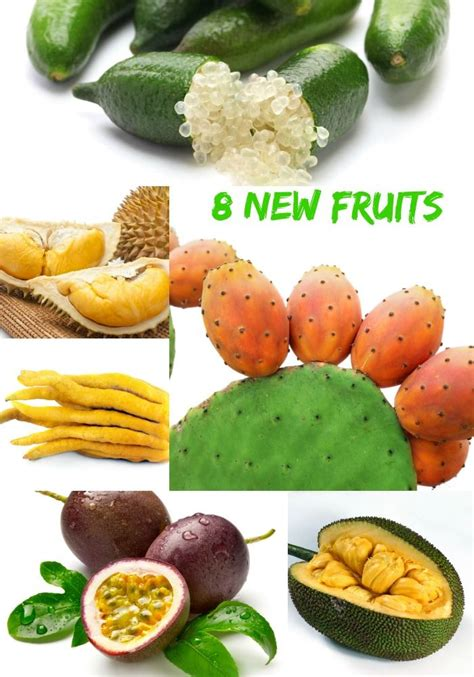 7 fruits for new year 171 best images about rosh hashanah recipes and more en