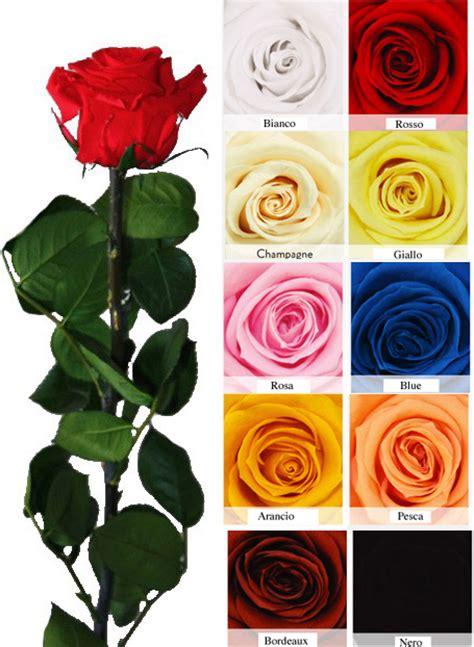 fiori stabilizzati prezzi stabilizzate a stelo l incantesimo delle