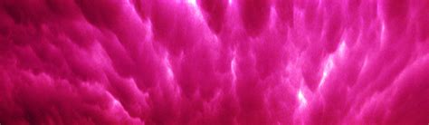 header design pink pink website headers