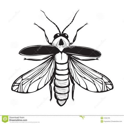 Tinta Naga dibujo manchado de tinta negro insecto de la