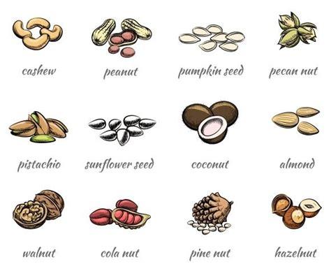 Mariza Choconut Spread Jam 350gr 140 best watercolor food images on food