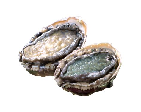 Diy Home Design Projects by Cleaning Abalone In 7 Easy Steps
