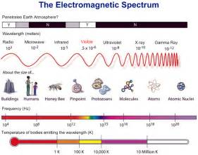 cool infographic on the e m spectrum 171 this is your brain