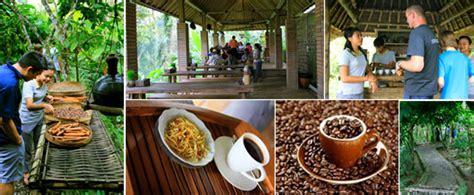 Coffee Bean Di Bali wahyu bali tour