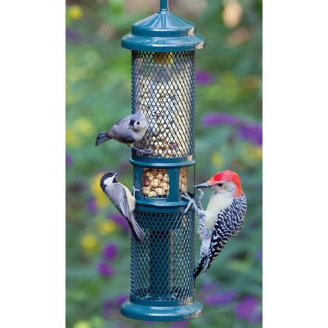 bird s choice brome peanut bird feeder