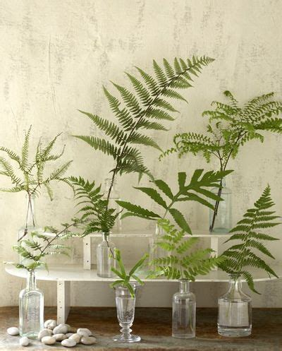 fern decor west aussie wedding decorations and styling