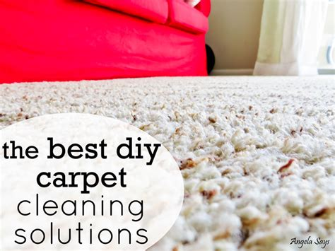 Rug Cleaning Solution by 301 Moved Permanently