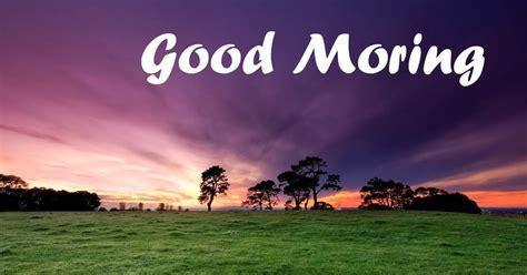 wallpaper free download good morning top 100 latest good morning wallpapers download