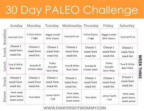 diary of a fit 30 day paleo challenge come with free meal plan printables diary of a