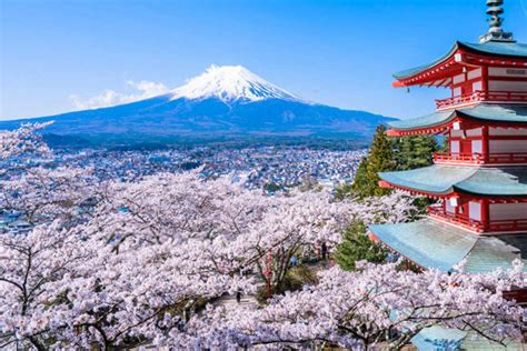 cheap flights from singapore to tokyo cheaptickets sg