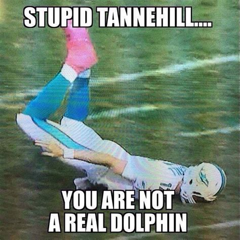 Funny Miami Dolphins Memes - tannehill trying to be a dolphin nfl memes pinterest