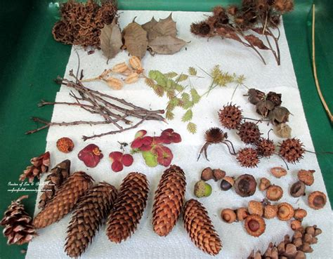 nature materials diy project making fairies from natural materials our