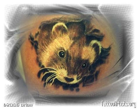ferret tattoo designs 1000 ideas about ferret on tattoos
