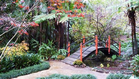japanese garden tamborine mountain botanic gardens