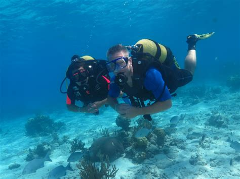 dive courses padi learn to dive scuba diving varadero