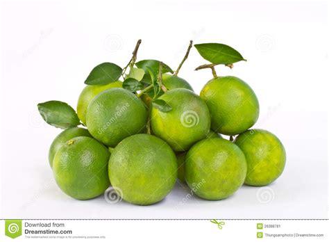 imagenes de naranjas verdes naranjas dulces verdes imagen de archivo imagen 26388781