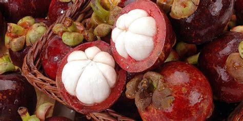 Obat Herbal Kulit Manggis jual obat herbal kulit manggis