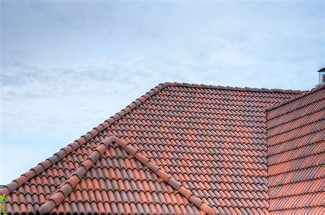 Barrel Tile Roof High Barrel Roof Tile Mediterranean Exterior Milwaukee By Vande Hey Raleigh