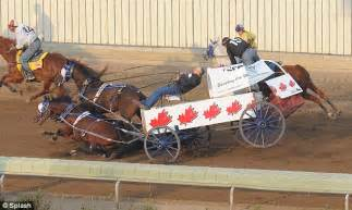 Calgary stampede pictured the dramatic moment three horses died in