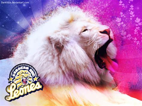 imagenes de los leones del caracas leones del caracas bbc by darkvzla on deviantart
