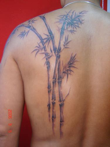 bamboo tattoo leeds crazy tattoo for girls back tattoos tumblr