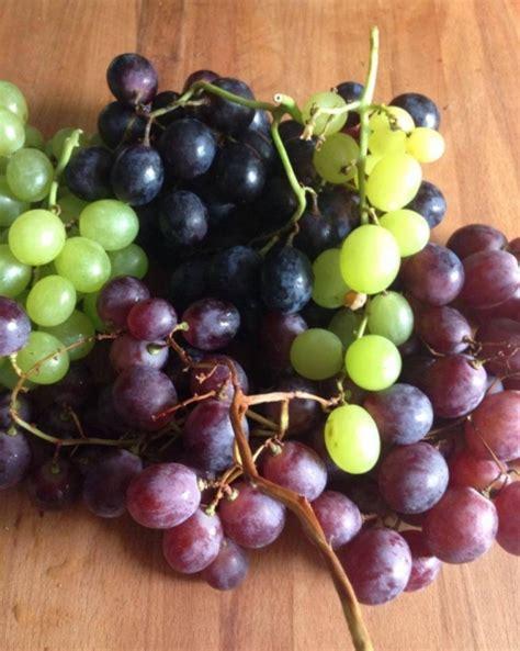 alimentazione maratona maratona d uva e marina di naturalmente crudo danno