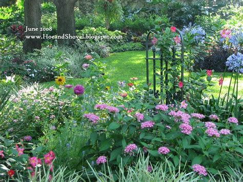 17 best images about florida gardening favorites on