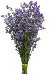 Flower Vase Arrangements Blue Limonium