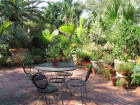 Patio Bushes by Display Garden Always Growing