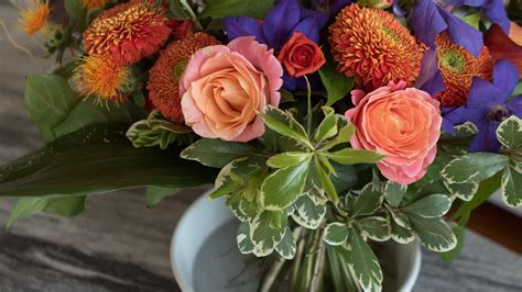 flower arranging basics flower arranging tips