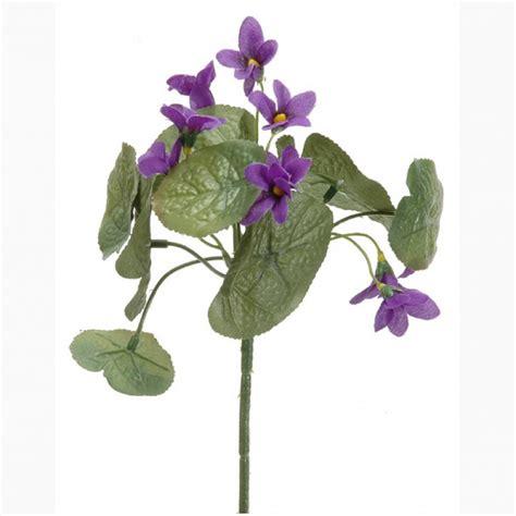 violetta fiore violetta mazzo x5 vi1 25 2fct5835 piante e fiori