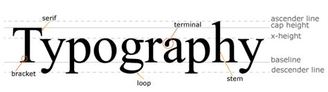 typography line height defining the anatomy of typography tutorial webucator