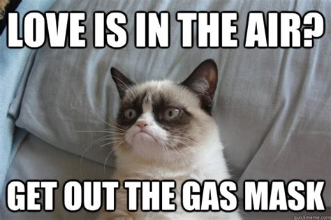 Grumpy Cat Love Meme - love is in the air get out the gas mask misc quickmeme