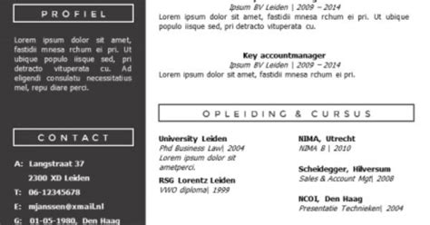 Cv Sjabloon Apple modern cv sjabloon zelf te bewerken in ms office