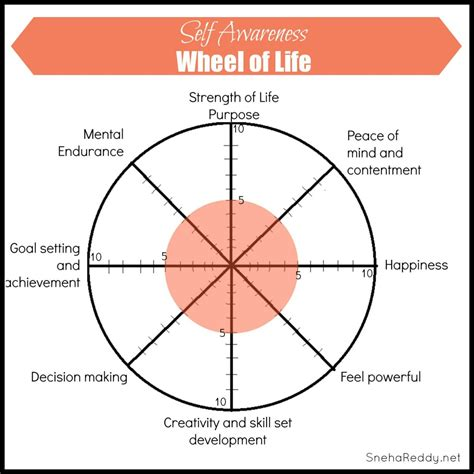 buddhist wheel of template wheel of assessment self awareness wheel of