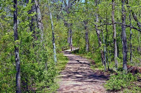 trail to bromide hill in sulphur oklahoma pathways