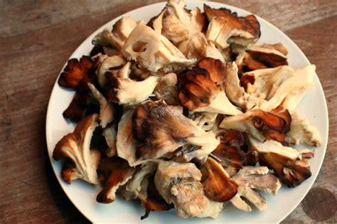 clean  hen   woods mushroom food   food