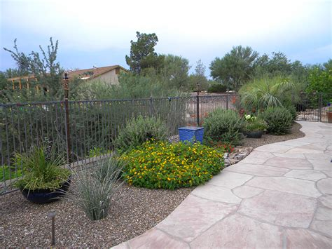 tucson landscape gallery tucson landscaping by terra