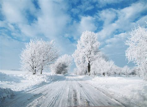 beautiful winter winter great atmosphere