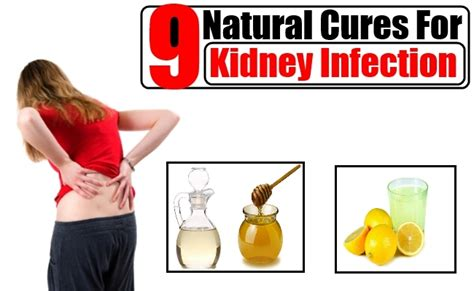kidney infection treatment bladder kidney infection