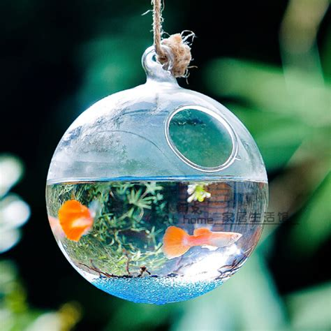Nice Christmas Decoration Stores #2: Round-Bottom-Glass-Terrarium-Aquarium-Hanging-Glass-Globe-Fish-Bowl-Wedding-Decorative-Fish-Tank-Handmade-Glass.jpg