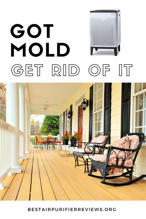 how to get rid of mold in house the best air purifiers for removing mold from your home