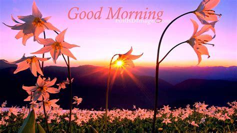 wallpaper flower good morning good morning love flower images good morning flower