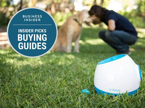 pet technologies the best tech gadgets for pets business insider